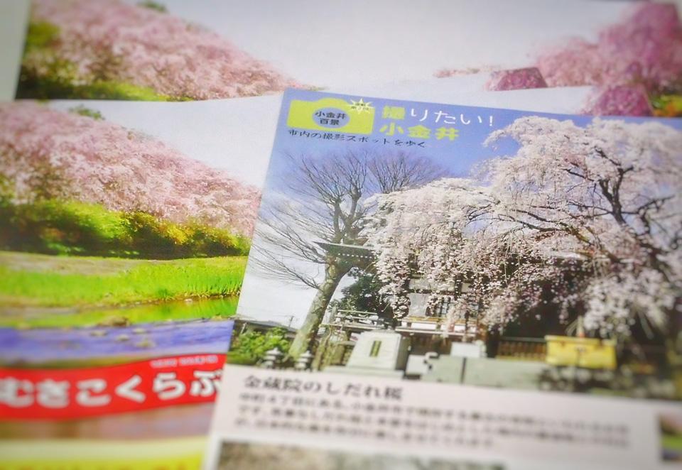 むさこくらぶ(2016年3月号(vol.109))