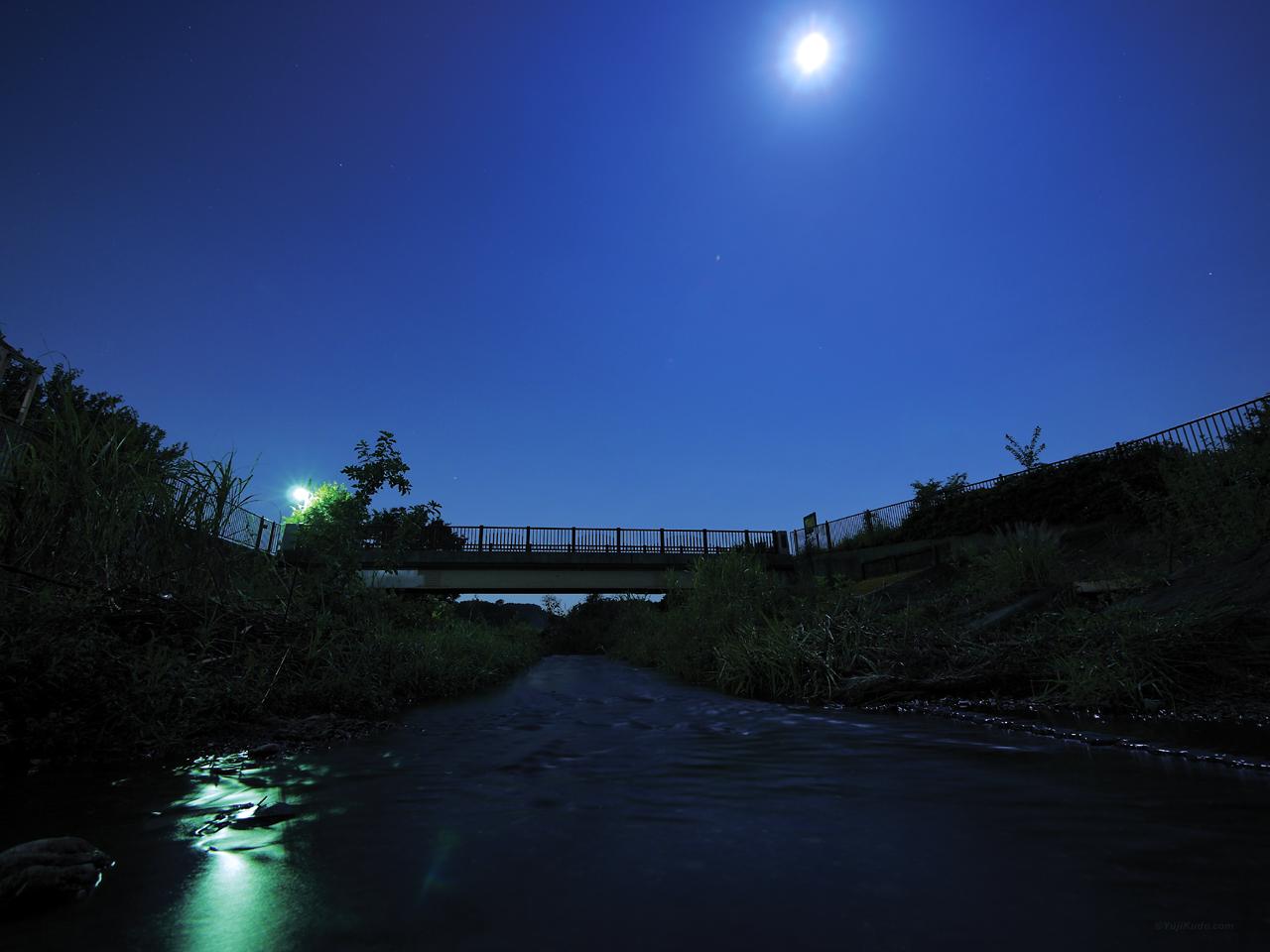 月夜の野川(小金井新橋)(むさこくらぶ(2016年9月号(vol.112))掲載)
