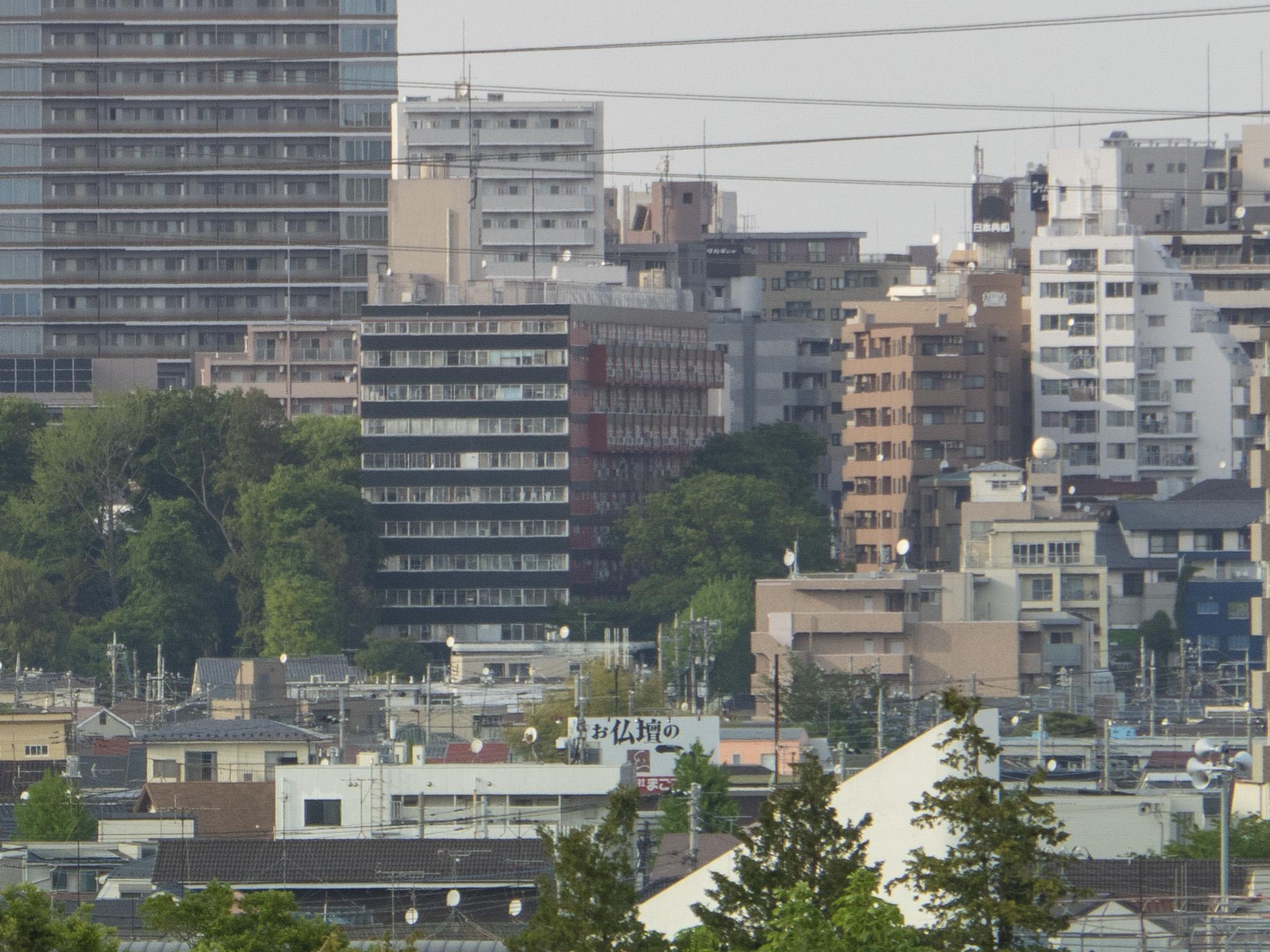 浅間山公園から望む武蔵小金井駅周辺【等倍3/3-右】